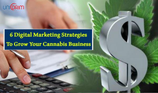 6 Digital Marketing Strategies for Cannabis Business